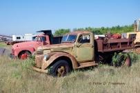 Vintage Dump Trucks
