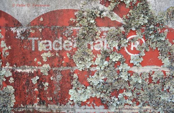 Trademark ®