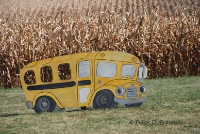 Iowa School Bus