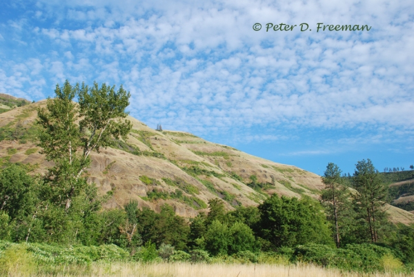 Idaho Hillside