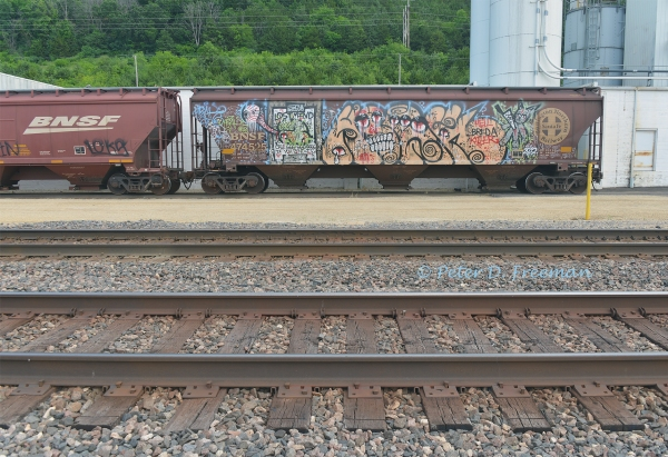 Railroad Graffiti 21