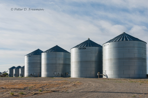 A Cluster of Silos