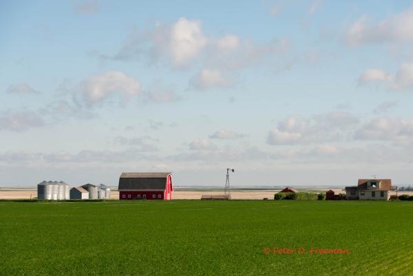Montana Farm