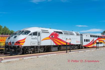 Rail Runner 1
