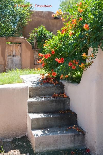 Santa Fe Steps